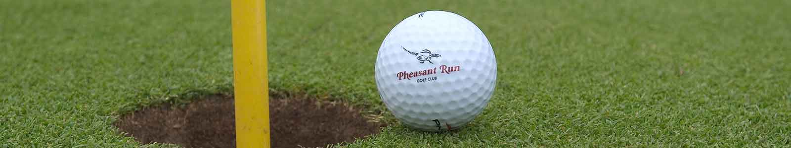 get the pheasant run golf app