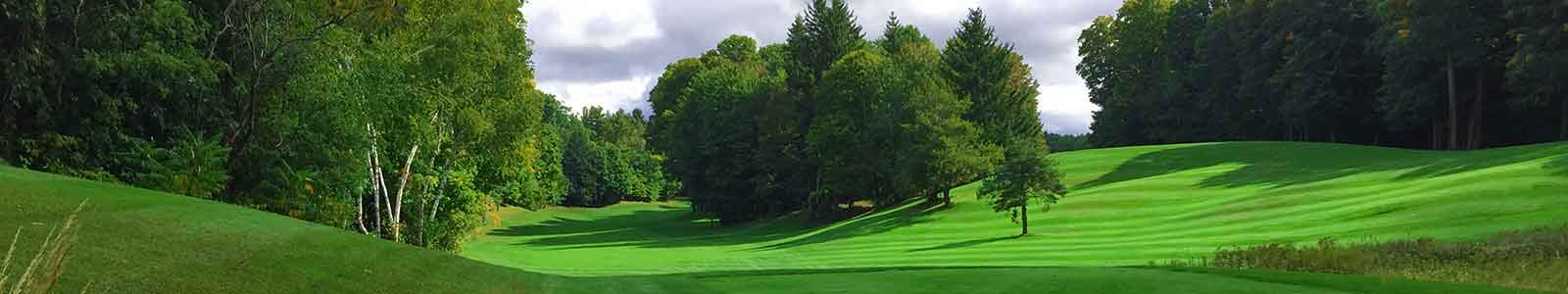 about the Pheasant Run Golf Course